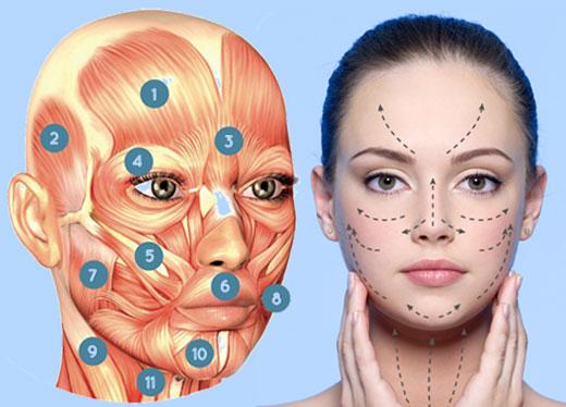 profesional masaje facial