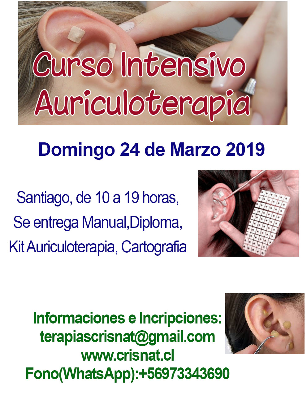 Curso Auriculoterapia