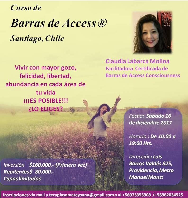Curso de Access Bars®