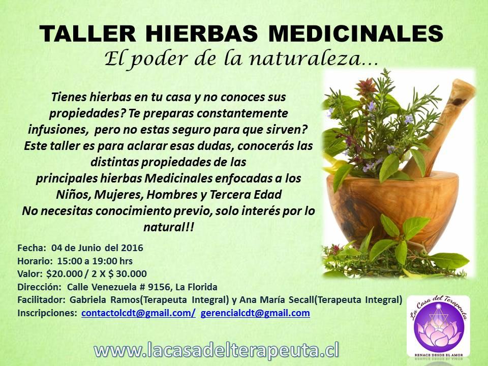Taller de hierbas medicinales el poder de la naturaleza for Definicion de vivero