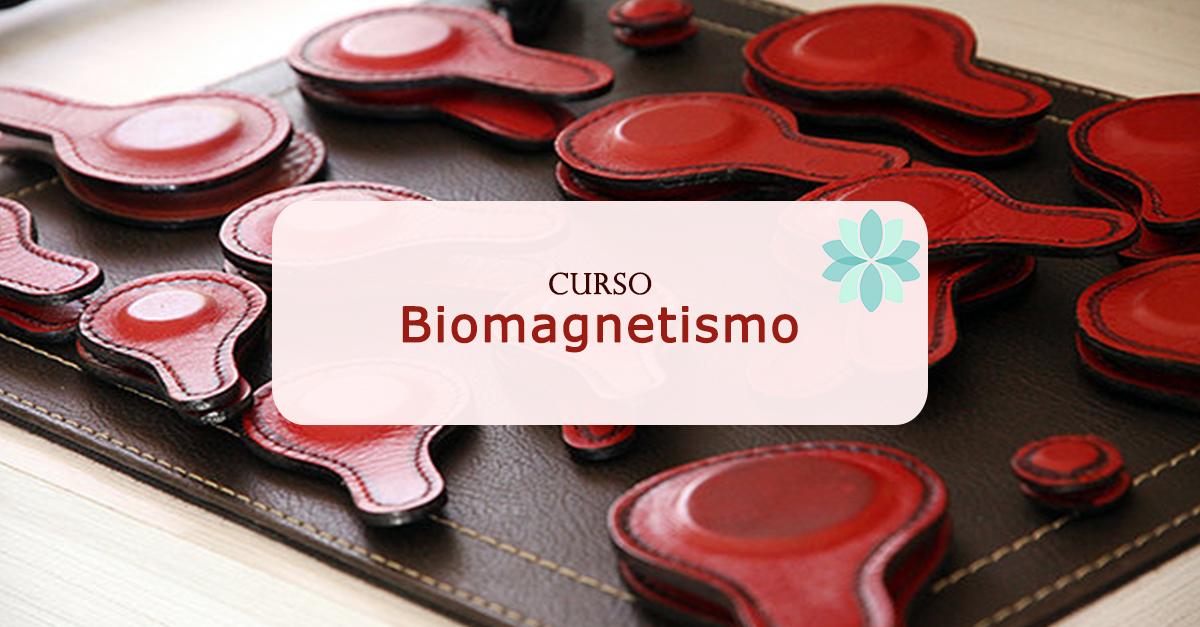 Curso Biomagnetismo y Bioenergética