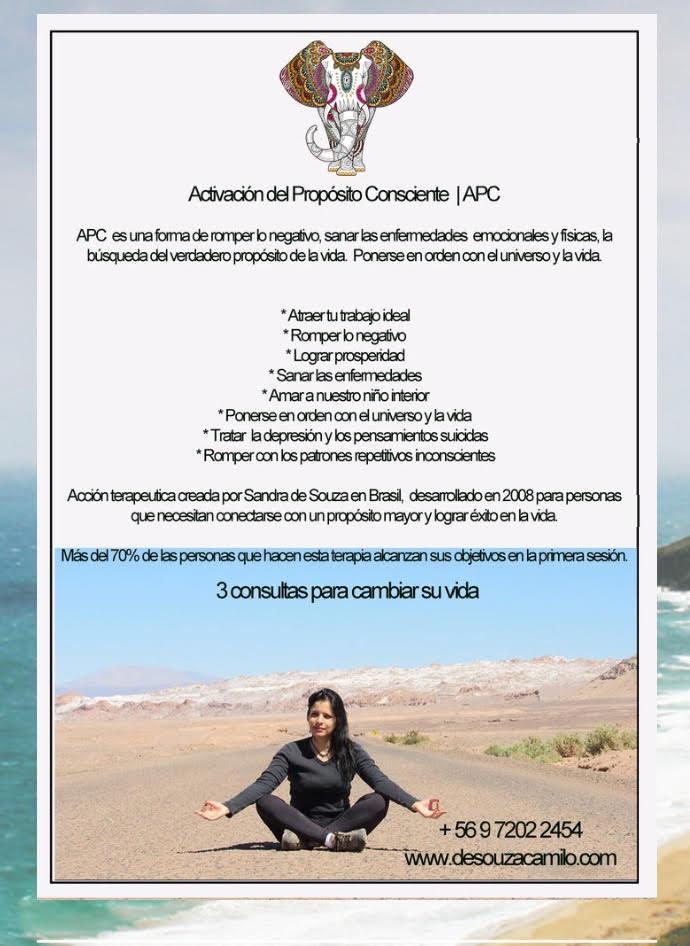 APC | Activación del Propósito Consciente