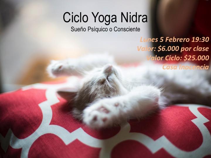 Ciclo Yoga Nidra, Sueño Psiquico o Consciente