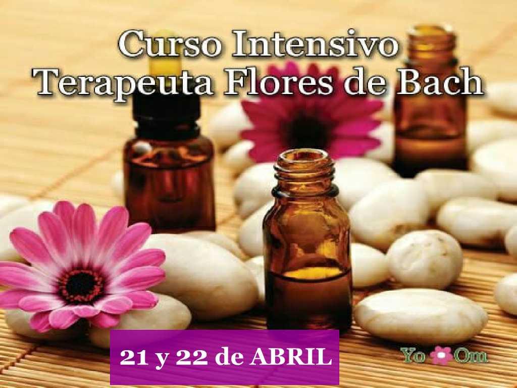 Terapia Integral Flores de Bach