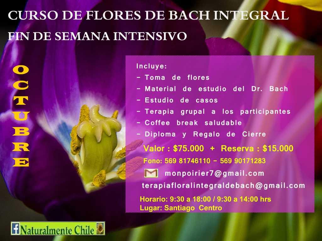 Curso Terapia Flores de Bach Integrativo