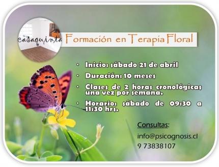 Curso de Formación en terapia Floral Presencial