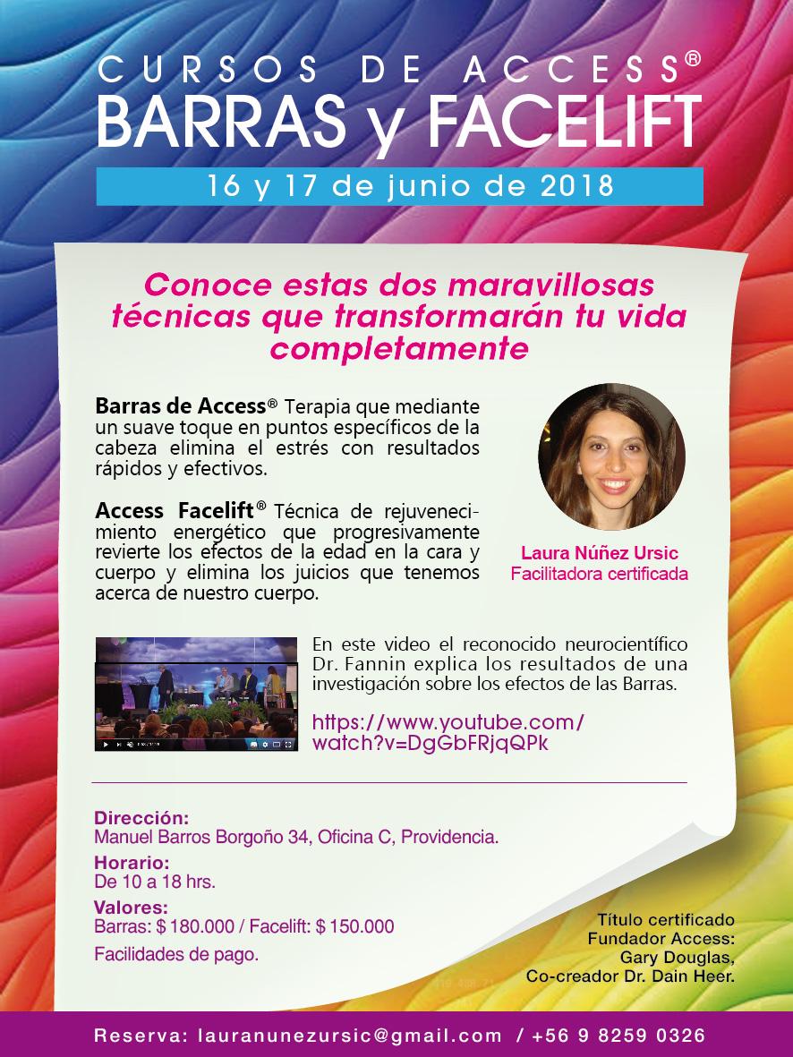 Curso de las Barras de Access en Santiago