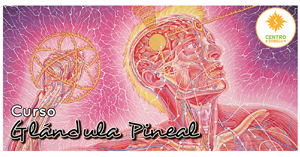 Taller Activación de la Glándula Pineal